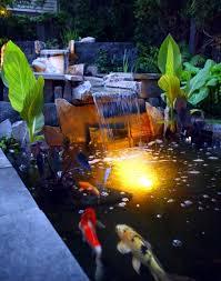 koi pond lighting ideas.  pond koi ponds at night in pond lighting ideas 2