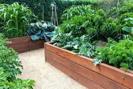 plastic garden beds plastic raised garden beds backyard bed ideas 7 raised garden bed plastic garden