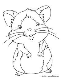 Small Picture Hamster coloring pages Hellokidscom