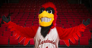 Joining Charlie Cardinal's 48-year tradition means shutting your beak