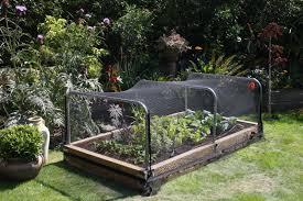 bird netting for garden. Contemporary Garden Inside Bird Netting For Garden L