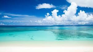 Tropical Beach - 4k Ultra Hd Beach ...