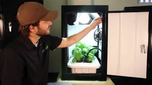 Hydroponic Grow Cabinet Hydroponic Grow Box Works Best Growing Kit By Supercloset Youtube