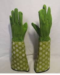 rose pruning gloves leather