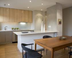 Decorating A Small Apartment Kitchen Open Kitchen Designs In Small Apartments Zitzatcom 23 Open