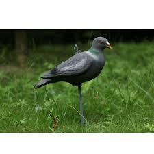 che aux oiseaux bait deter weed pest