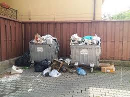 FOTO: Tomberoane din care se revarsă gunoaiele într-o zonă din Iași