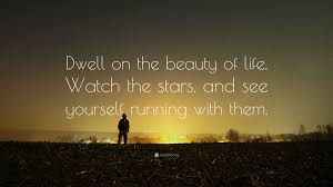 Beauty Of Life Quote