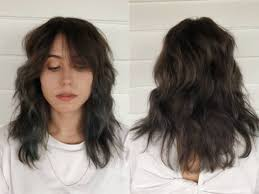 125 Coolest Shag Haircuts For All Ages Prochronism