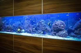 Aquarium Weight Calculator Fish Tank Weight Calculator