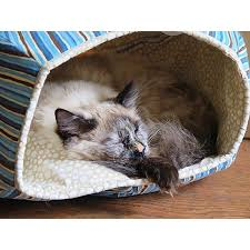 ball bed. the cat ball bed