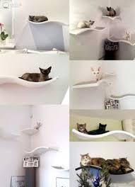 cat safe furniture. Cat Perch, Shelf Wave, Floating Shelves, Pet Design, Furniture, Curve Bed Safe Furniture A