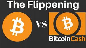 Bitcoin Cash Vs Bitcoin Price Chart Btc Vs Bch Flippening Over Bitcoin Bitcoin Cash Chart Price Breakdown