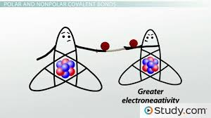 Covalent Bonds Predicting Bond Polarity And Ionic Character