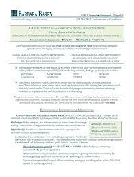 s executive resume sample marketing s executive s executive resume sample