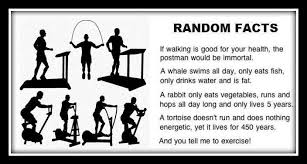 Funny-random-facts-about-exercise.jpg via Relatably.com