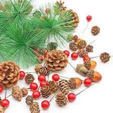 DomeStar 120PCS Pine Cone Set, Artificial Acorns ... - Amazon.com