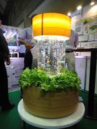 Hydroponics Herb Garden Kitchen Urban Farming Revolution Impact Farm Allows You To Grow Fresh