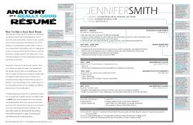 The Anatomy Of A Really Good Resume A Good Resume Example The