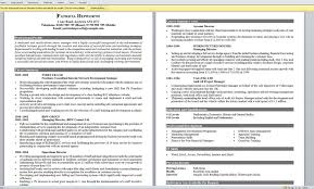 Examples Of Really Good Resumes Interesting Resume Template Really Good Resumes Examples Best Resumes Free