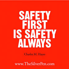 Security Quotes Adorable 48 Security Quotes QuotePrism