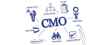 Resultado de imagen para Chief Marketing Officer
