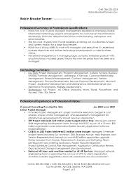 Career Summary For Resume Examples Professional Resume Summary Example  Professional Resume