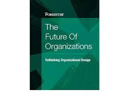 Health Pei Organizational Chart Future Of Organizations Rethinking Organizational Design
