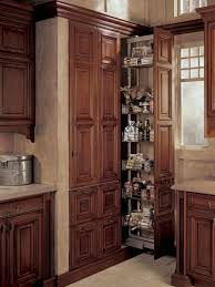 81 great high resolution cabinet pull out shelves kitchen pantry storage pantries for an organized diy get in the swing of home depot hardware blind