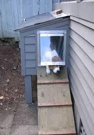 pin by hatice boncuku on wiskhy weatherproof dog door webin home