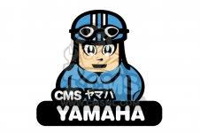 yamaha ty250 1974 usa parts list partsmanual partsfiche yamaha ty250 1974 usa