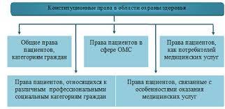 Организационно экономические и правовые аспекты модернизации  Рис 7 Классификация прав пациента
