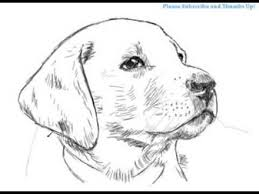 Small Picture Labrador Retriever Coloring Page By YUCKLES Yellow Lab Coloring
