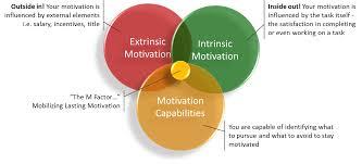 internal motivation factors in tourism management iibm institute lms internal motivation factors
