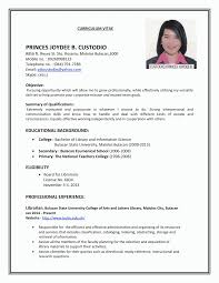 Professional Resume Format Interesting 48 Resume Format For Job Application First Time Malawi Research
