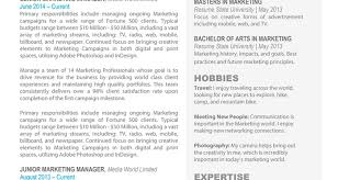 Mesmerize Sample Resume Tags Help Writing Professional Resume