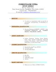 9 best images of examples of types of resumes different types of