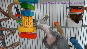 make your own bird toys dried ear corn