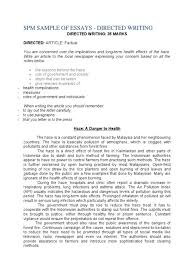 critical essay examples templatesinstathredsco apa sample short  factual essay example the joy luck club by amy tan sample paper nature examples for high