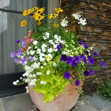 Potted arrangements and hanging planters. With our brilliant planters  Jackson Hole property owners can make their yards and porches vibrant and  elegant.