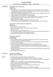 Financial Assistant Resume Financial Assistant Resume Samples Velvet Jobs 1