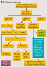 Polycytemia vera dödlighet