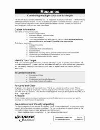 Professional Resume Example Unique Resume Examples For A Job