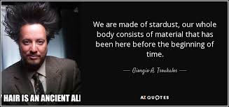 Stardust Quotes Adorable Giorgio A Tsoukalos Quote We Are Made Of Stardust Our Whole Body