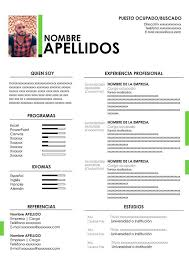 Formatos De Curriculum Vitae En Word Gratis Modelo De Cv En Word Gratis Plantilla Para Descargar