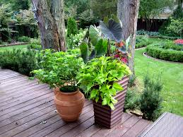 A Gallery Of Beautiful Container Garden IdeasContainer Garden Plans Pictures