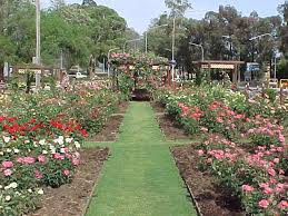 Small Picture Landscaping And Gardening Highgate Landscape Gardeners In North