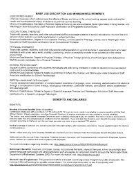 Brief Job Description And Minimum Requirements Fliphtml5