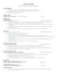 Sample Free Resume Templates Primer Word Document Download