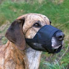 <b>Намордник</b> Trixie <b>нейлоновый для</b> собак - купить в ЮниЗоо в ...